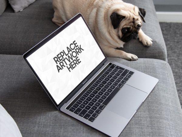 MacBook Pro with Dog Mockup  mockup, free mockup, psd mockup, mockup psd, free psd, psd, download mockup, mockup download, photoshop mockup, mock-up, free mock-up, mock-up psd, mockup template, free mockup psd, presentation mockup, branding mockup, free psd mockup